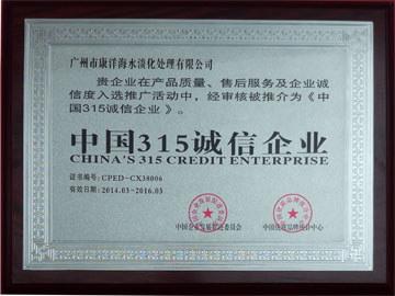 China's 315 credit enterprise